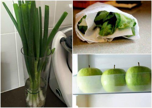 9 नुस्खे जो खाद्य पदार्थों को देर तक तरोताजा रख सकते हैं
