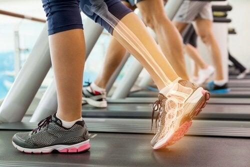 जिलेटिन: हड्डियों और जोड़ों में होता सुधार