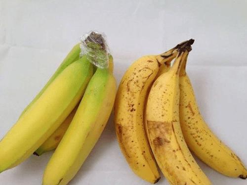 खाद्य पदार्थों की ताज़गी