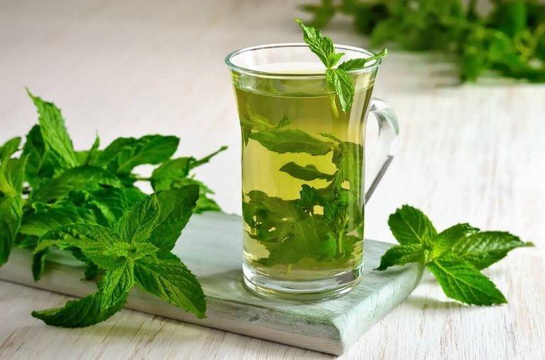 पुदीने की चाय में हैं सेहत के चमत्कारी गुण
