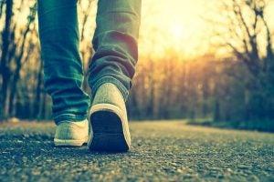 डेली वॉकिंग में छिपा है आपकी सेहत का वरदान: रोज़ाना सैर पर जाएं