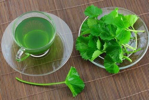 पैरों की सूजन के लिए अजमोद चाय