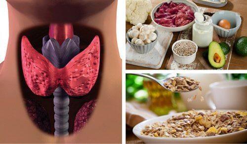 मेटाबोलिज्म को तेज़ करने वाले खाद्य पदार्थों की मदद से हाइपोथायरॉइडिज्म का मुकाबला करें