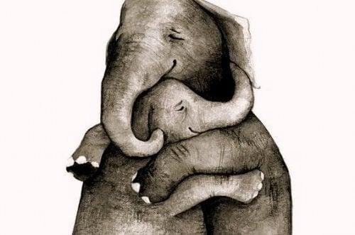 जो कुछ भी अच्छा मिले, उसे गले लगाएं, और हमेशा अपने साथ रखें