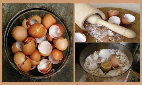 अंडे के छिलके से बनायें 6 अद्भुत प्राकृतिक नुस्ख़े