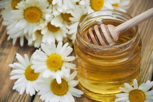 2. माइग्रेन के लिए कैमोमाइल और शहद (Chamomile and honey)