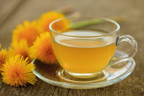 5 कारण जिनके लिए आपको सिंहपर्णी की चाय पीनी चाहिए