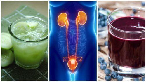 5 ड्रिंक : यूरिनरी ट्रैक्ट इन्फेक्शन, UTI से मुकाबला करने के लिए