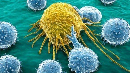 ओवेरी और पैनक्रियाज के कैंसर के इलाज के लिए एक नया मॉलिक्यूल