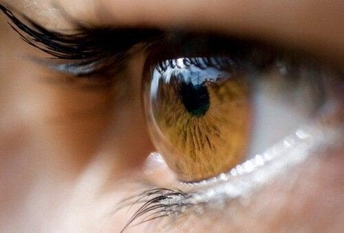 आँखों का रंग : भूरी और हल्के भूरे रंग की आँखें (Brown and light brown)