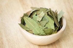 तेज पत्ते का तेल : benefits of bay leaf oil