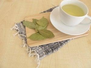 तेज पत्ते का तेल bay leaf oil antibiotic