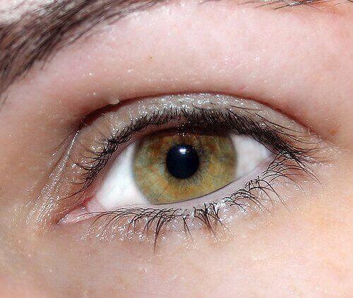 आँखों का रंग : हरी आँखें (Green eyes)