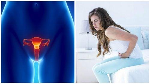 ओवेरियन कैंसर के बारे में 7 महत्वपूर्ण तथ्य जिन्हें आपका जानना ज़रूरी है