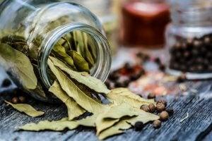 तेज पत्ते का तेल benefits of bay leaf oil : skin