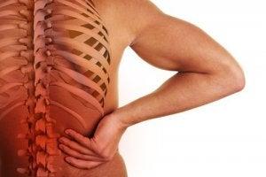 पीठ के निचले हिस्से में दर्द : प्रोलैप्स्ड या हर्निएटेड डिस्क (Prolapsed or herniated disc)