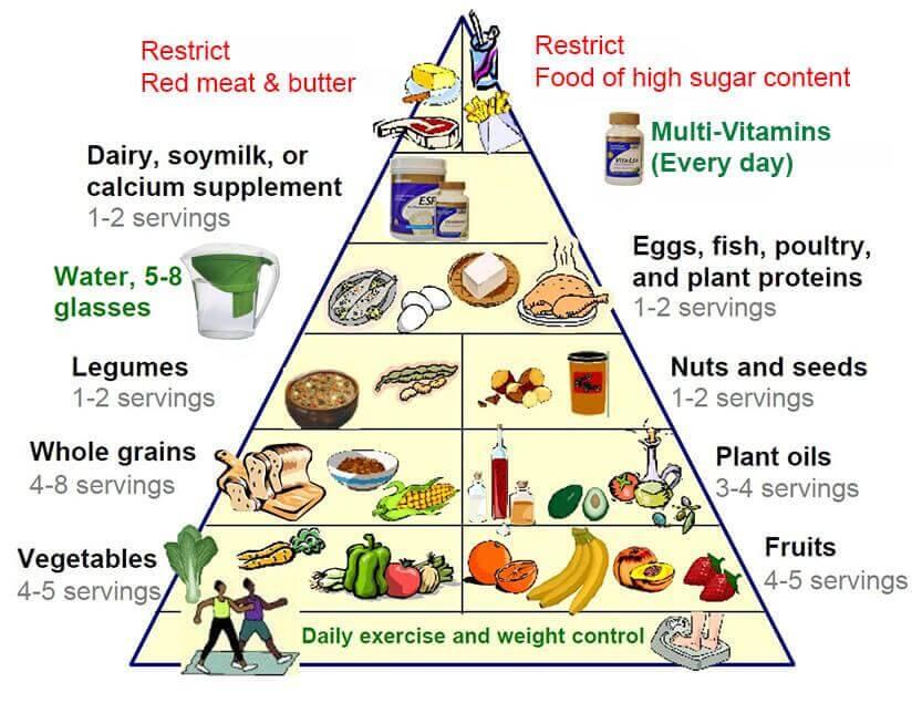 नया फूड पिरामिड: एक स्वस्थ जीवन की कुंजी