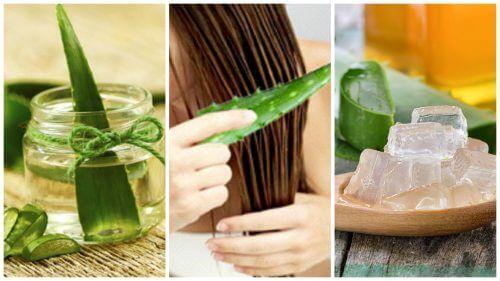 5 एलोवेरा ट्रीटमेंट : आपके बालों को अद्भुत मजबूती देने के लिए