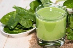 5 ग्रीन स्मूदी : एलो वेरा और पालक स्मूदी (Aloe Vera and Spinach Smoothie)