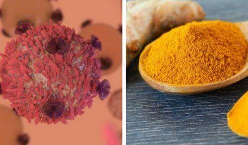 जानिए कि हल्दी कैंसर का प्रतिरोध कैसे करती है