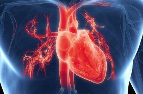 हृदय रोगों के 7 सबसे आम लक्षण
