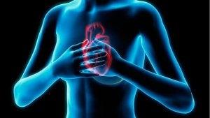 हृदय रोगों के लक्षण : सीने में दर्द या एनजाइना