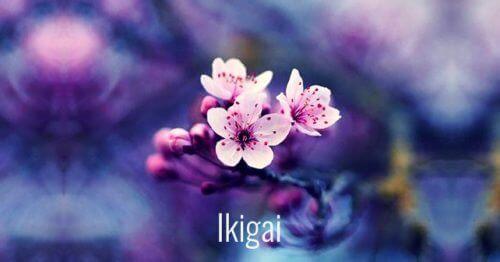 7 सुंदर जापानी शब्द : व्यक्तिगत विकास के अद्भुत मन्त्र