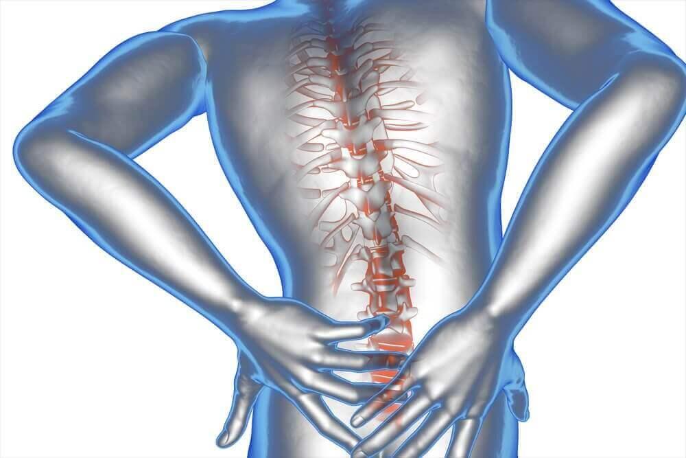 अर्निका और नारियल तेल का मरहम: पीठ के निचले हिस्से में दर्द का इलाज करने के लिए