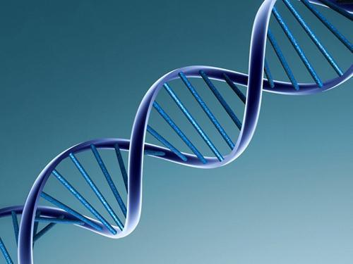 फ्रेटर्नल ट्विंस अपना केवल 50% डीएनए साझा करते हैं