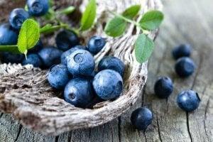 यूरिनरी ट्रैक्ट इन्फेक्शन :  ब्लूबेरी (blueberry)