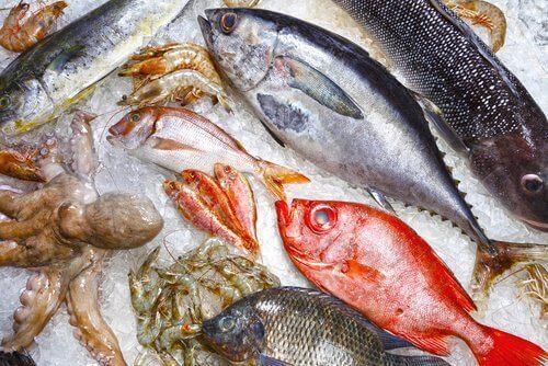 9 किस्म की नुकसानदेह मछलियां जिनसे बचना ही बेहतर है
