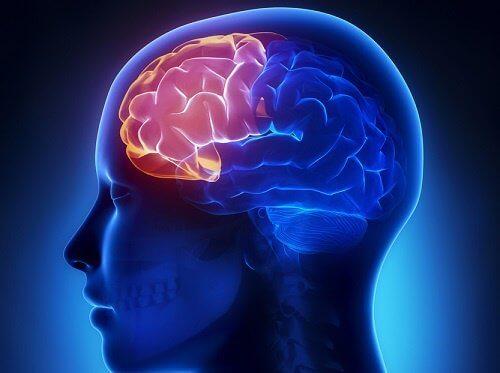 4 मेंटल एक्सरसाइज : वृद्धावस्था में दिमागी हालत दुरुस्त रखने के लिए