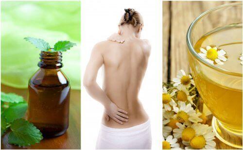 मांसपेशियों के खिंचाव में राहत देने वाली 7 प्राकृतिक दवाइयां