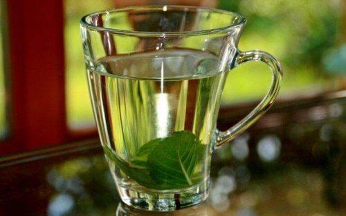 तुलसी की चाय (Basil Tea)