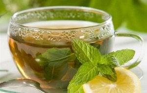 आपके मेटाबोलिज्म के लिए पुदीने की चाय