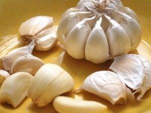 आर्टरीज को अनब्लॉक करे लहसुन (Garlic)