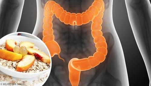 इर्रिटेबल बॉवेल सिंड्रोम का इलाज करने के लिए क्या खाएं