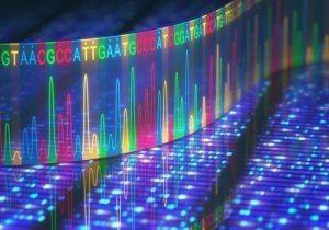 जीन म्यूटेशन कहां हो सकता है?
