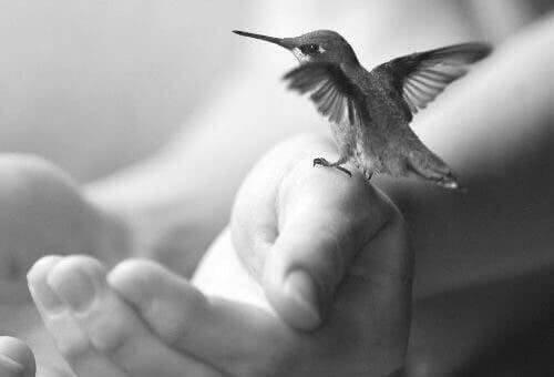 शांतमिजाज बनने की 5 हेल्दी हैबिट्स