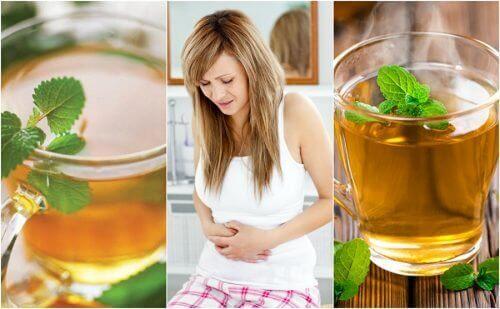 इर्रिटेबल बॉवेल सिंड्रोम के लिए 5 सबसे अच्छी चाय