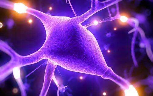 मैग्नीशियम कैसे आपकी मानसिक क्षमताओं में सुधार करता है