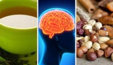 याददाश्त बढ़ाने के लिए क्या खाएं, तेज दिमाग के लिए कुछ टिप्स