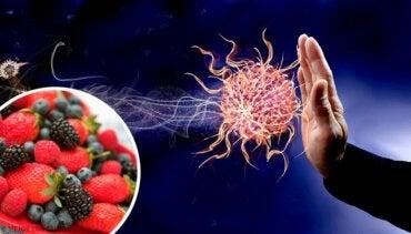 9 खाद्य : ये आपके इम्यून सिस्टम को पावरफुल बनाते हैं
